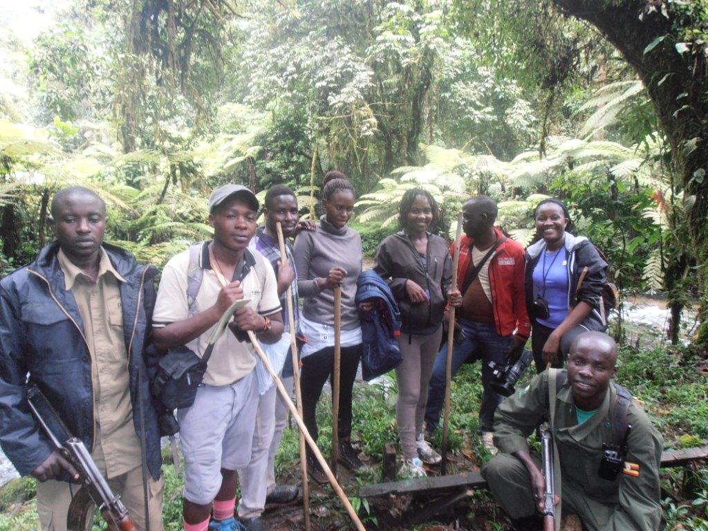 Bwindi Walking Safaris