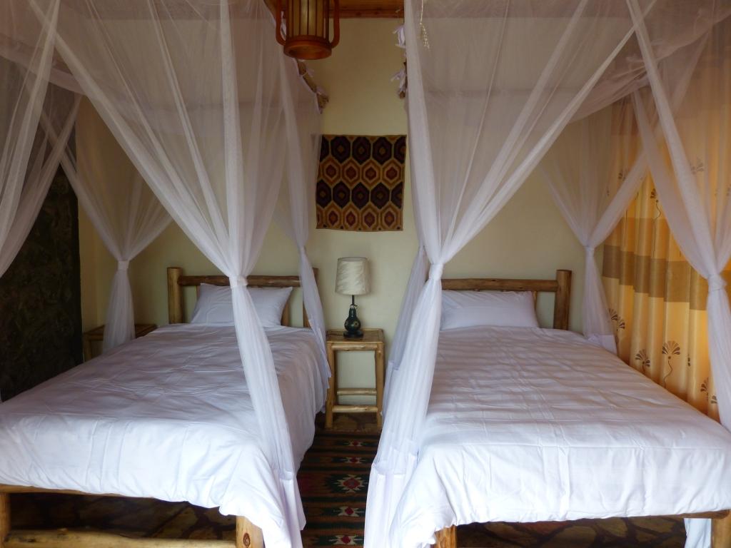 accommodation,bwindi jungle lodge,uganda,uganda jungle lodges (6)